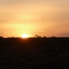 Sunset on the ghan low