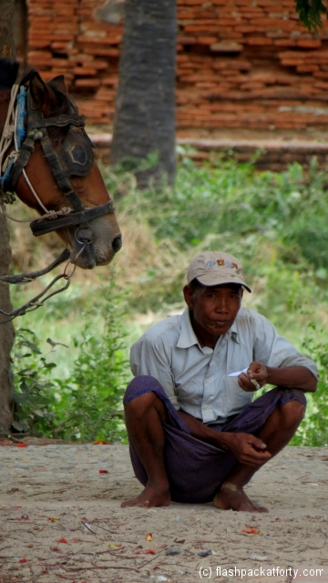 horse cart driver and horse