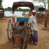 inwa-horse-cart