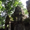 moss-on-entrance-angkor