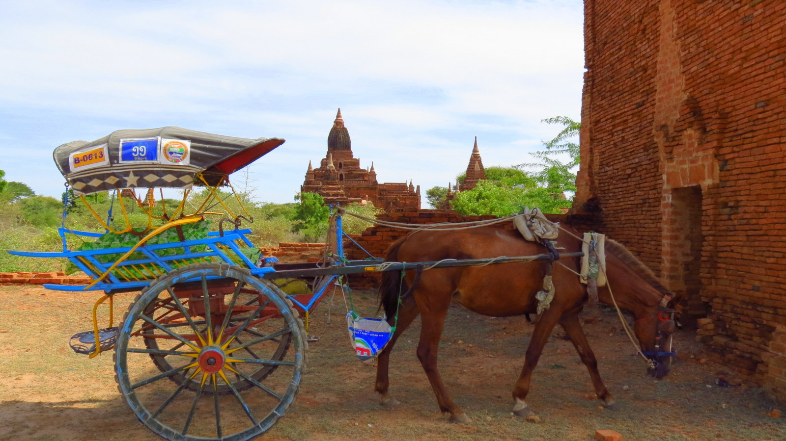 bagan-horse-and-cart-with-temple