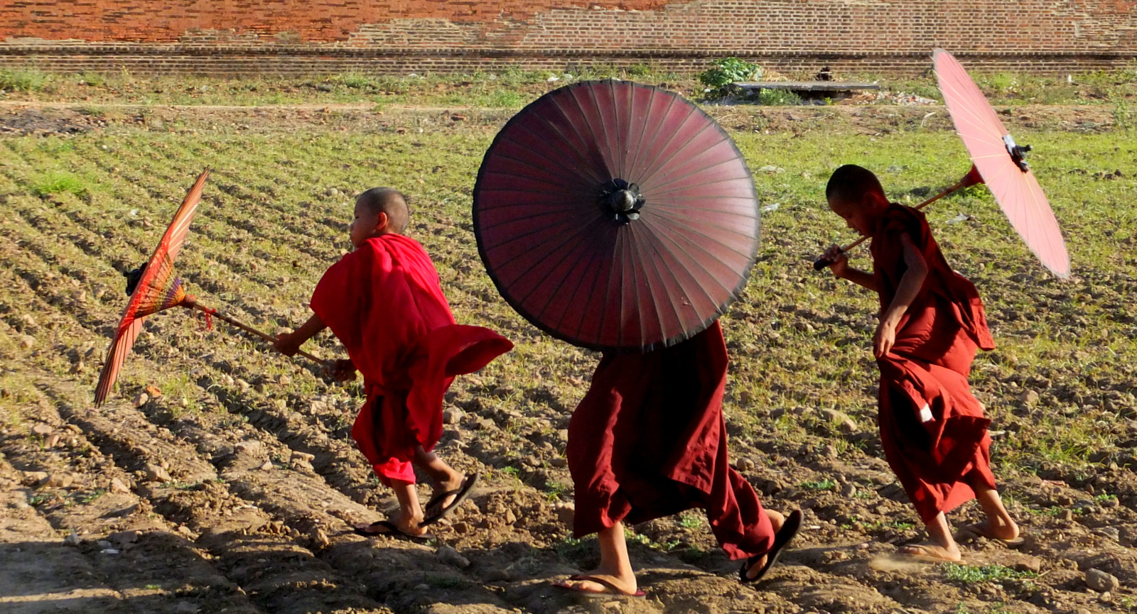monks-and-parasols