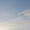 bats-in-flight-phnom-sampeau