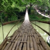 floating-bamboo-bridge-bohol