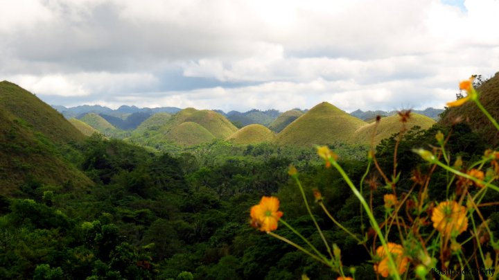 chocolate-hills-and-flower-bohol