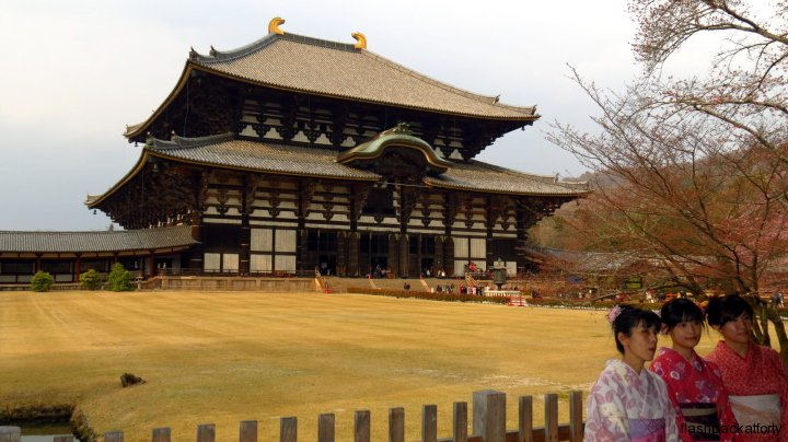 Great Buddha Hall and garden todaiji