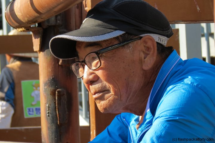old-man-ponders-bull-contest-jinju-bulllring-2012-korea