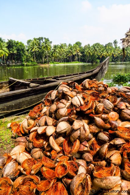 coconut-husk-pile-kerala-backwaters
