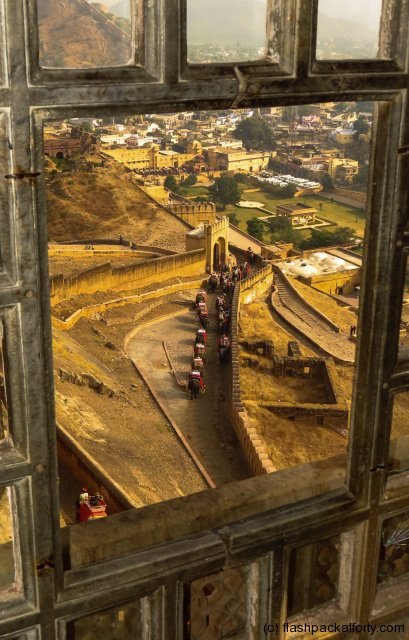 amber-fort-elephant-trail-through-fort-window-jaipur