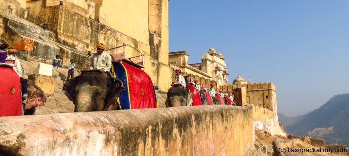 elephant-rides-jaipur-amber-fort