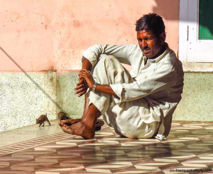 bikaner-rate-temple-man-with-rat