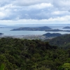 Coromandel Harbour View