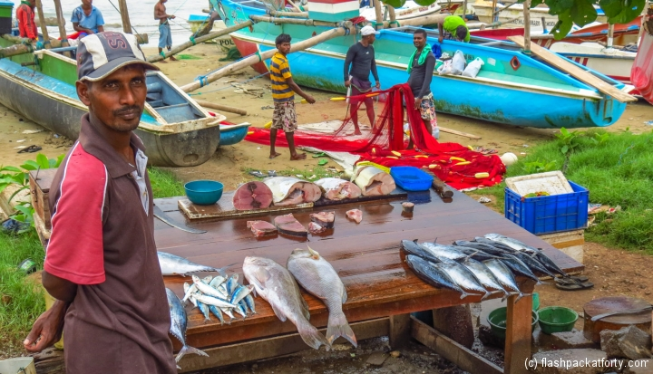 galle-fisherman-sells-his-catch
