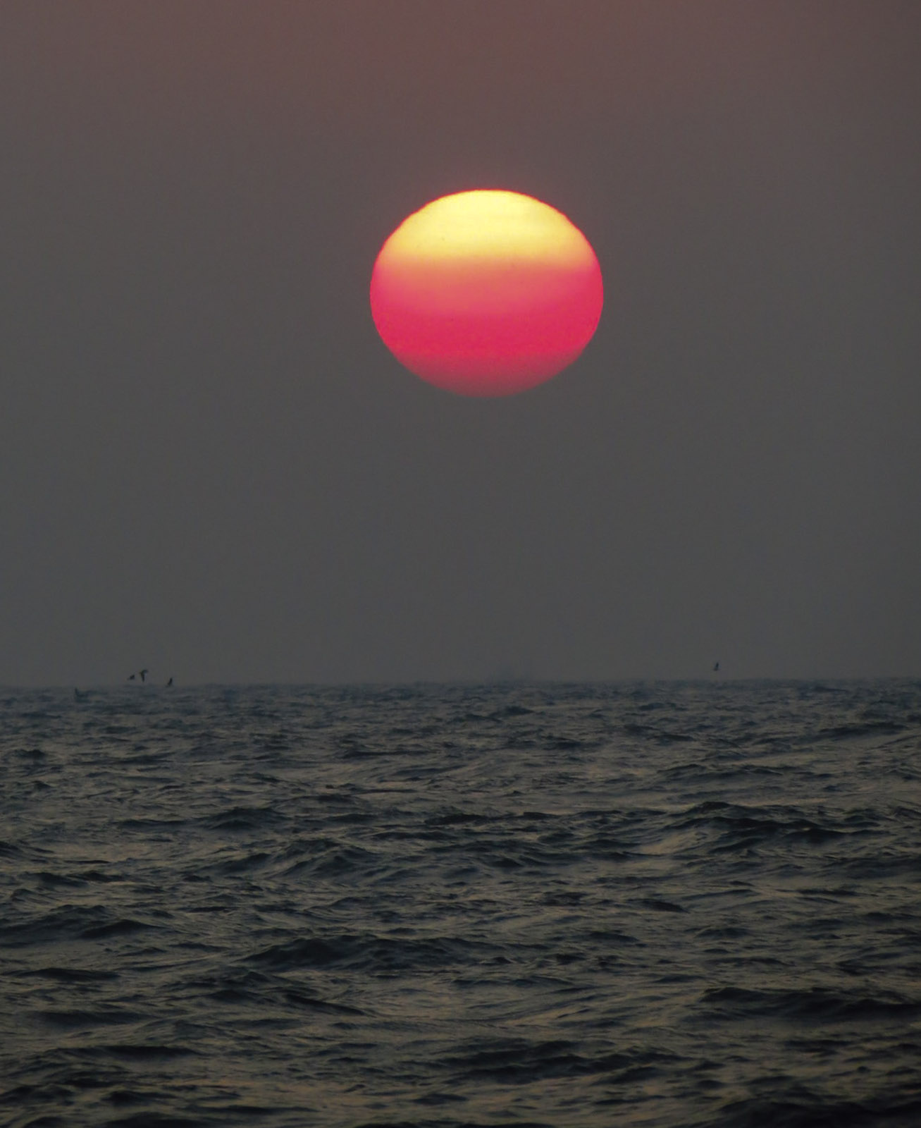 gos-sunset-and-sea