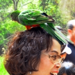 bird-on-head