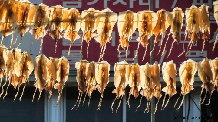 dried-fish-drying-korea