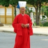 cao dai  red gown