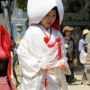 Bride Miyajima shrine