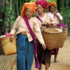 inn-thein-tribe-traders