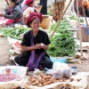 ywama-market-trader