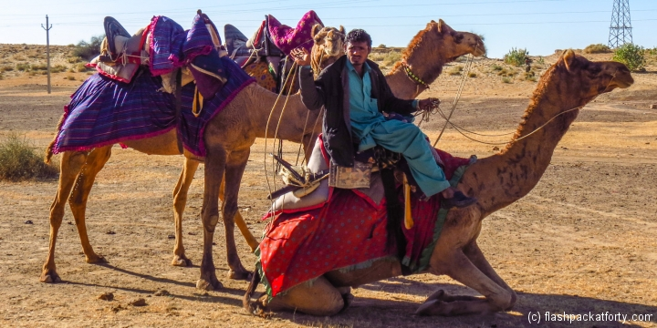 camel-driver-lowers-camels-jaisalmer