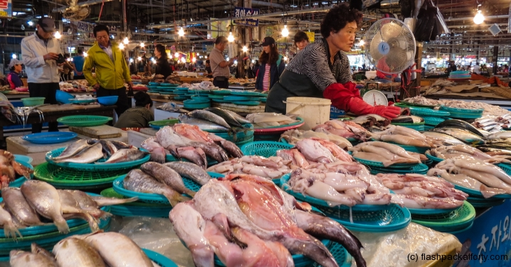 five-day-market-trader-with-fish-jeju