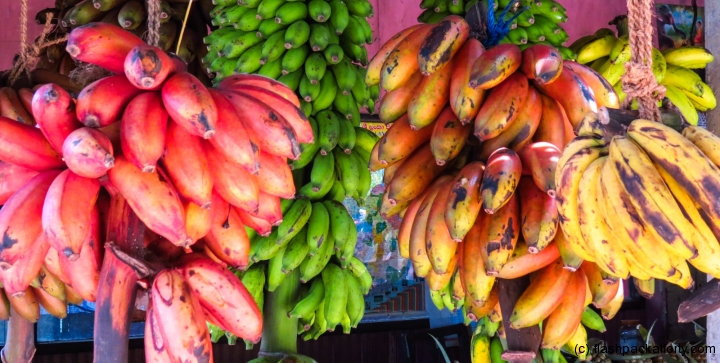 red-bananas-kandy