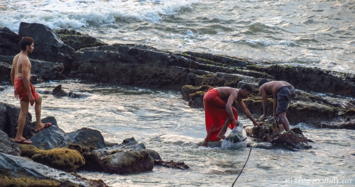 mussel-and-crab-hunting-kerala