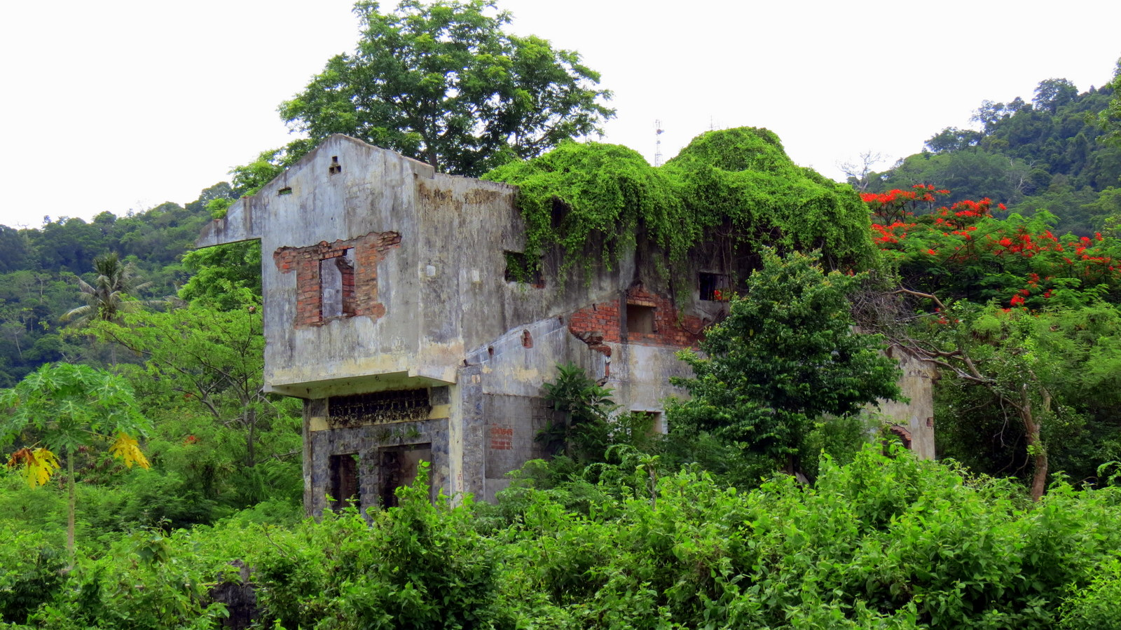 kep-nature-and-empty-buildings