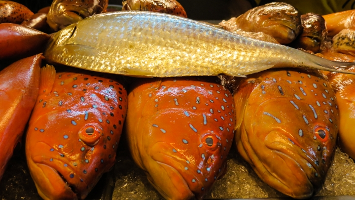 fresh-fish-kuching-top-spot
