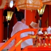 Fushim Inari-taisha shrine reading
