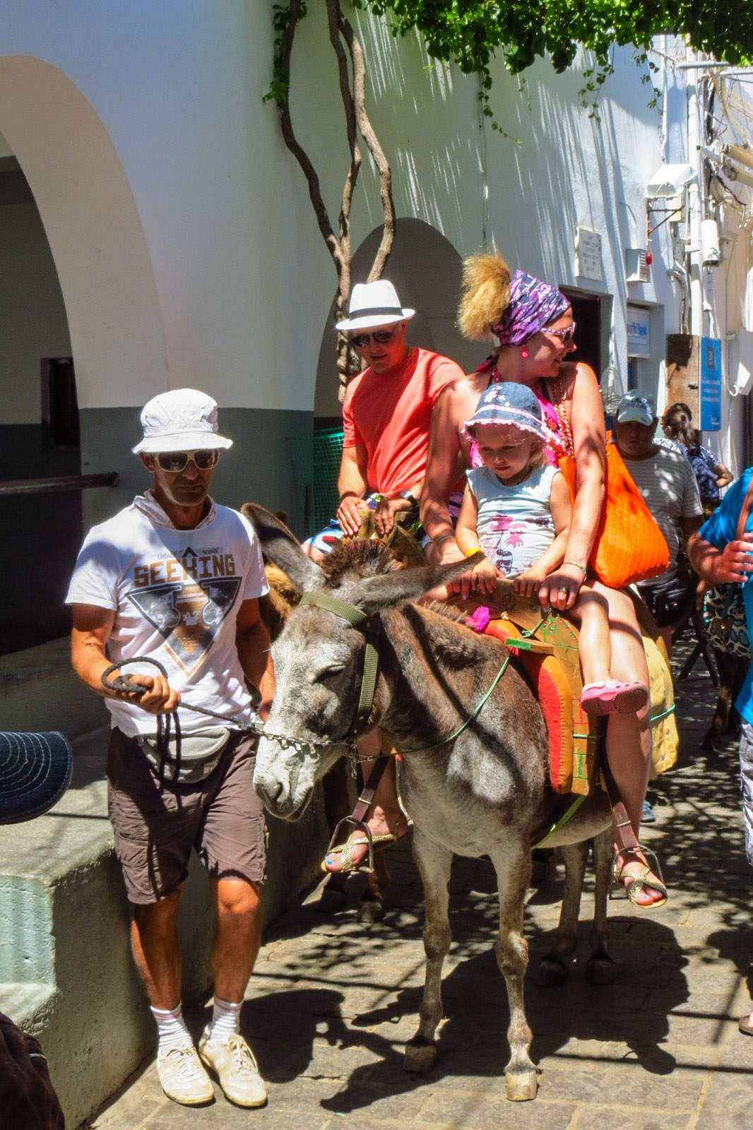 family-on-donkey-in-lindos-greece