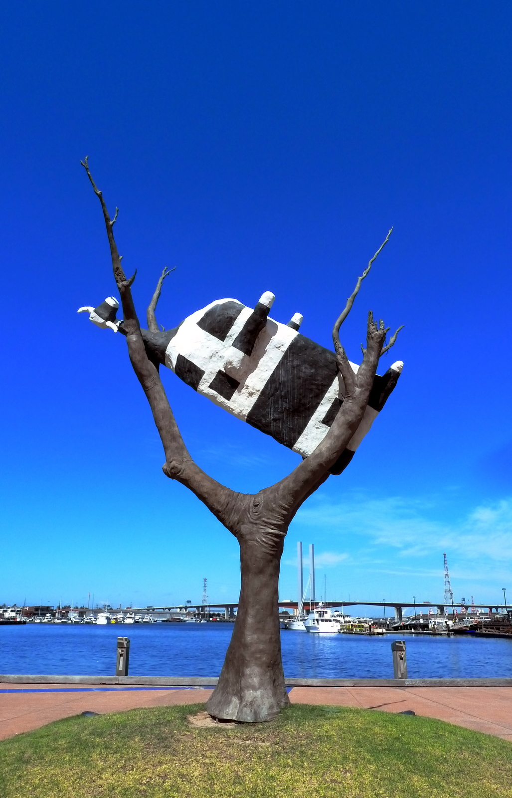 cow-in-a-tree-melbourne