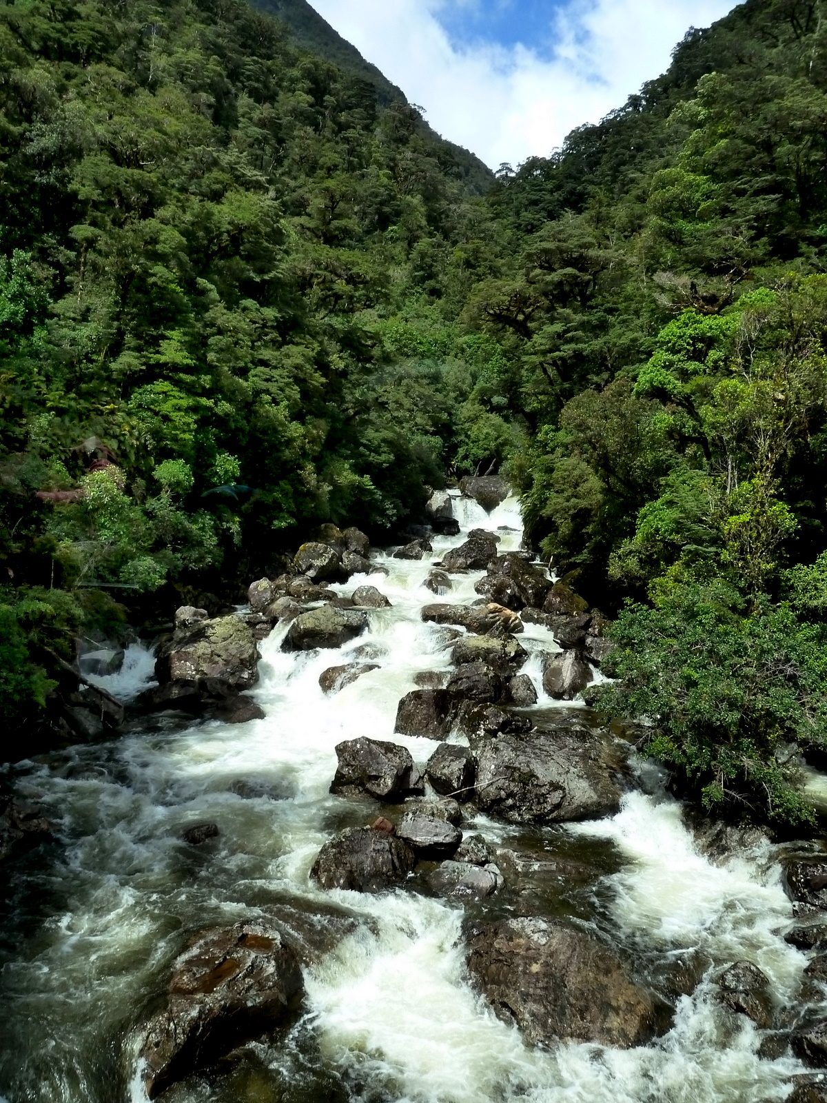 doubtful-sound-river-flow