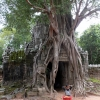 ta-prohm-and-girl