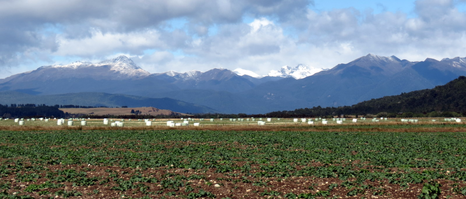 road-from-te-anau-to-manapouri
