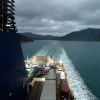 bluebridge-ferry-picton-wellington