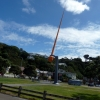 wellington-harbour-art