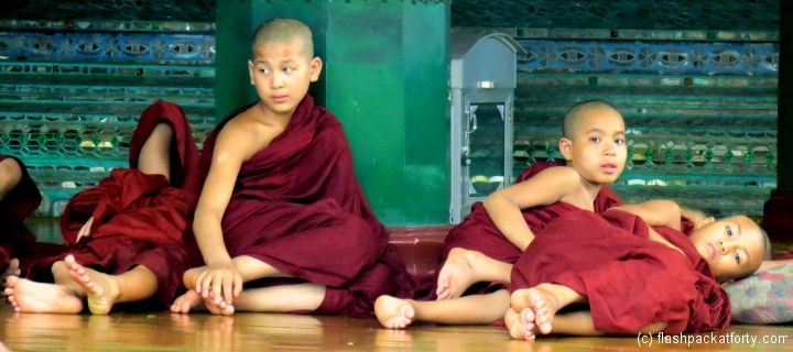 shwedagon-pagoda-novice-monks