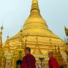 shwedagon-pagoda-monks