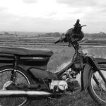 Moped by paddy field