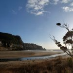 From Dunedin to the Catlins