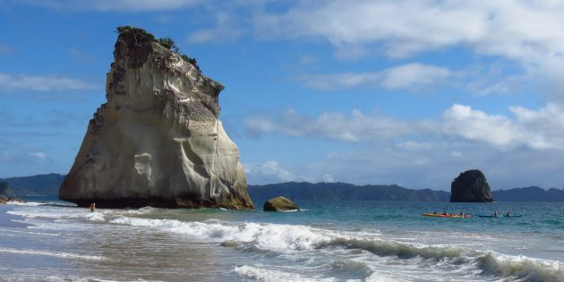 Coromandel, Oysters, Coves &#038; Beaches