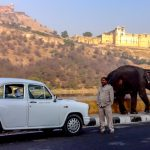 India Car Rental and Driver Hire