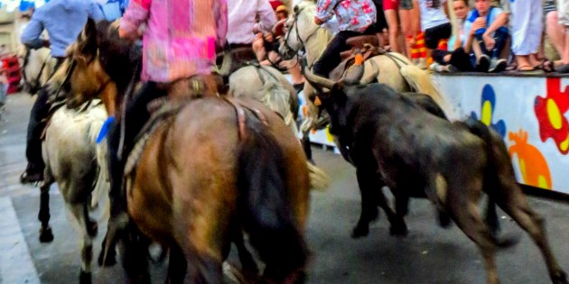 Your Guide to the Ceret Feria: Part One